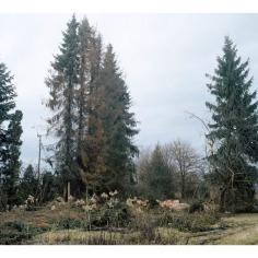 Abschnitt B5©Anja Schäfer